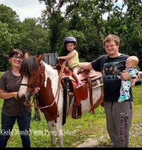 gold rush farm pony rides